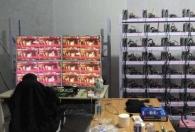 dnf工作室与nbe游赚网